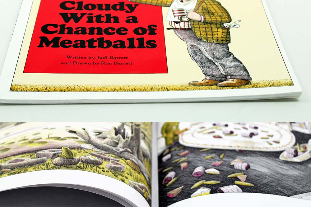 Cloudy With A Chance of Meatballs Softcover Children